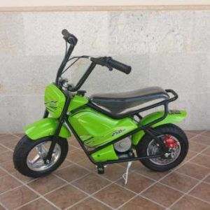 MOTO PEKECARS 250W 24V GREEN